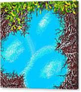 A Birds Eye View Canvas Print