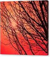 A Black Winter Tree On Red Canvas Print