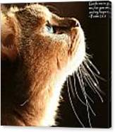 A Cat Prayer Canvas Print