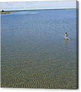 A Child Running Through The Water Canvas Print