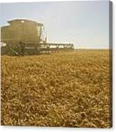 A Combine Harvester Works A Field Canvas Print