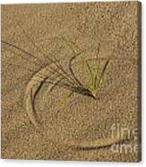 A Compass In The Sand Canvas Print
