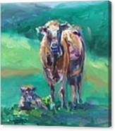 A Cow And Her Calf Canvas Print