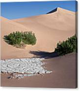 A Death Valley View Canvas Print