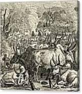 A Dinka Cattle Park, Southern Sudan Canvas Print