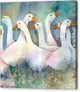 A Disorderly Group Of Geese Canvas Print