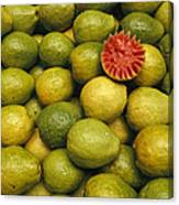 A Display Of Guavas In An Open Air Canvas Print