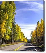 A Fall Drive  Canvas Print