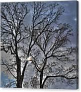 A Fall Sky Canvas Print