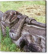A Fallen Wooden Totem Pole Lies Canvas Print