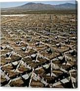 A Field Of Military Planes Canvas Print