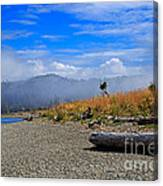 A Foggy Morning At Whiffin Spit Canvas Print