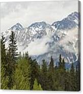 A Forest And The Rocky Mountains Canvas Print