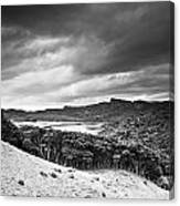 A Forest Area Along The Coast Under A Canvas Print
