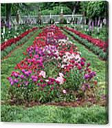 A Formal Garden Canvas Print