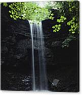 A Gentle Woodland Waterfall With Maple Canvas Print