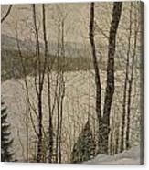 A Glimpse Of The Forest Canvas Print