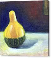 A Gourd  Canvas Print