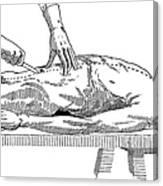 A Handbook Of Morbid Anatomy Canvas Print