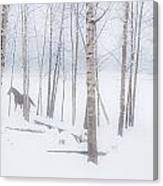 A Horse Stands Beside A Forest Of Bare Canvas Print