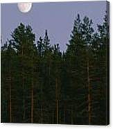 A Huge Moon, With Features Clearly Canvas Print
