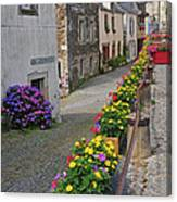 A Line Of Flowers In A French Village Canvas Print