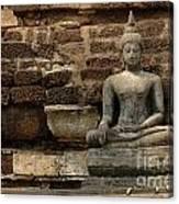 A Little Buddha Canvas Print