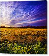 A Little Further South Canvas Print