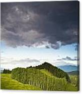 A Lush Green Landscape With Grassy Canvas Print