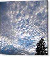 A Mackerel Sky Canvas Print