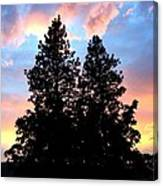 A Matchless Moment Canvas Print