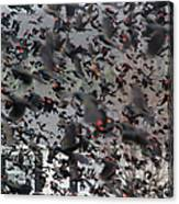 A Mob Of Red-winged Blackbirds Canvas Print