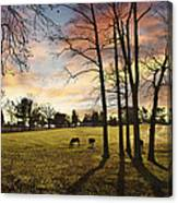 A New Day Begins Canvas Print