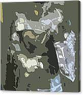 A Nightly Knight Canvas Print