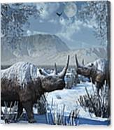 A Pair Of Woolly Rhinoceros In A Severe Canvas Print