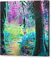 A Path Along A River Canvas Print