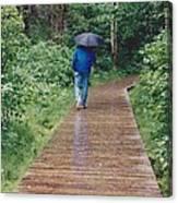 A Rainey Day In Alaska Canvas Print