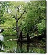 A River Runs Through Central Park  Canvas Print