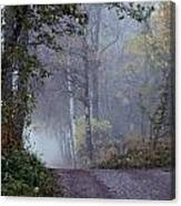 A Road Through A Misty Wood Canvas Print