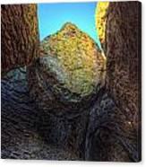 A Rock Balanced Precariously Canvas Print