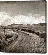 A Rural Path In Auvergne. France Canvas Print