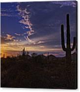 A Saguaro Sunset  Canvas Print