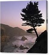 A Scenic View Of The Oregon Coast Canvas Print