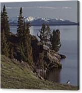A Scenic View Of Yellowstone Lake Canvas Print