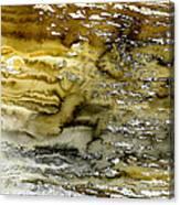 A Sea Of Raw Sienna Canvas Print