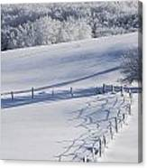 A Snowy Field Canvas Print
