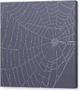 A Spider's Handiwork Canvas Print