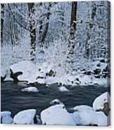 A Stream Running Through Snowy Woodland Canvas Print