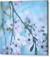 A Subtle Spring Canvas Print