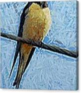 A Swallow On A Wire Canvas Print